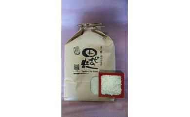 【A-045】「田代の米」ふるさと便白米 4.5kg
