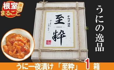 CD-33002 ウニ一夜漬け(塩ウニ)「至粋」300g[363942]