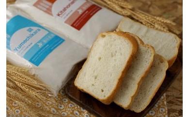 【W008】パン用小麦粉「ゆめちから」5㎏