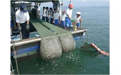 G-0074 日生諸島 遊漁船体験