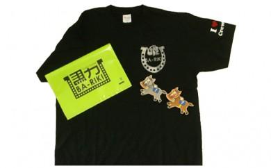 [№5900-0105]馬グッズ Tシャツ1枚&マグネット2個