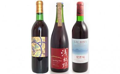[№5900-0102]琵琶湖ワインセット(2)