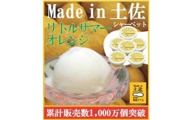 BB464 リトルサマーオレンジ(小夏)シャーベット6個/高知アイス/小夏/Madein 土佐【500pt】