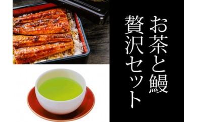 303-032 うなぎの蒲焼き 特大サイズ2尾(210g前後×2)・上級深蒸し茶100g