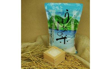 A025 さんべ浮布米(無洗米)(平成29年産) 5kg