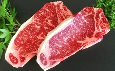 MJ-4201_都城産黒毛和牛サーロインステーキ400g