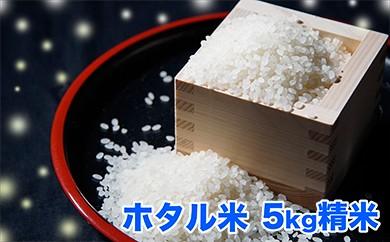 N-1 ホタルの飛び交う地で育ったコシヒカリ 「ホタル米」 精米5kg【30年度産新米】