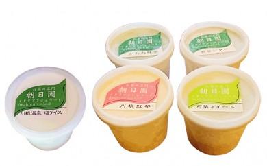 [№5695-0696]川根茶ジェラートセット10ヶ入
