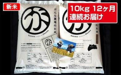 [№5865-0140]【12ヶ月連続定期便】がんも農場のお米毎月お楽しみ10kg