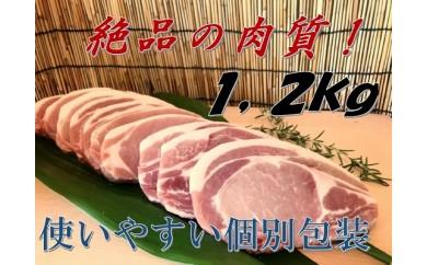 B400 国産!三元豚ロース肉10枚