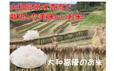 AG-8.【農村の恵みに笑顔かがやく】 大和高原 棚田米 ひとめぼれ 10kg