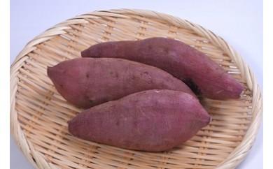【A14020】鹿児島県産「特選紅蜜芋!紅はるか」約10kg