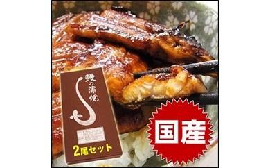 【B-10】国産 うなぎ 蒲焼(有頭)2本セット