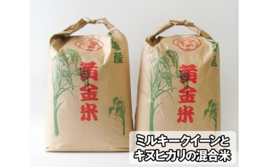 No.063 山元町産黄金米15kg