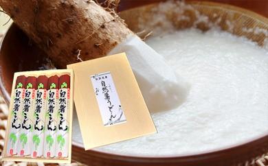 [№5880-0148]里郷 五城目産自然薯使用の自然薯うどん(稲庭製法)180g×5袋