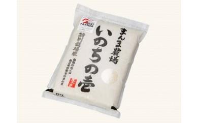 92.特別栽培米『いのちの壱』6㎏セット