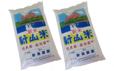 [№5724-0135]新山米(ななつぼし)5kg×2袋 10kg