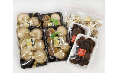 No.062 ファームTORAOの寅王椎茸セット / 生キクラゲ 干し スライス 北海道 人気