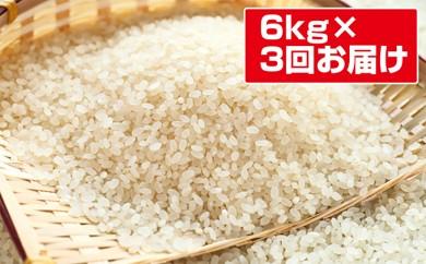 [№5755-0063]特別栽培米「らんざん恵米コシヒカリ」白米18kg(6kg×3回のお届け)