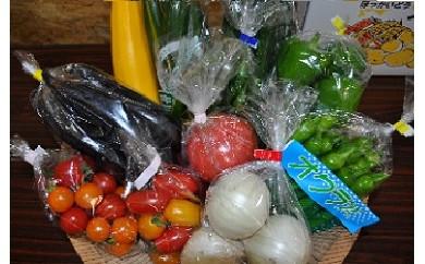 季節のお野菜詰め合わせ 夏(7月~8月)【20p】