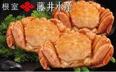 CB-09010 北海道産毛がに3尾(計1.5kg)[371594]