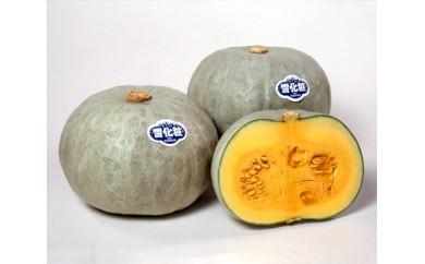No.060 かねこ農園 有機基準栽培 雪化粧かぼちゃ 約10kg