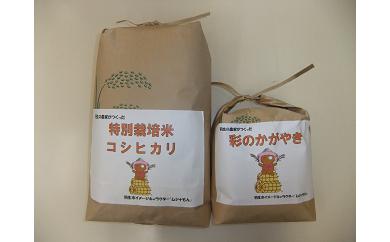 【令和元年産米:特栽米】特別栽培米コシヒカリと彩のかがやき食べ比べセット