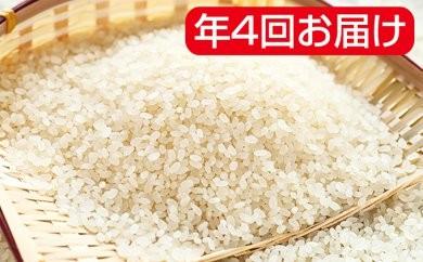 [№5787-0167]岐阜県産ハツシモ 30kg年4回(10月、1月、4月、7月)
