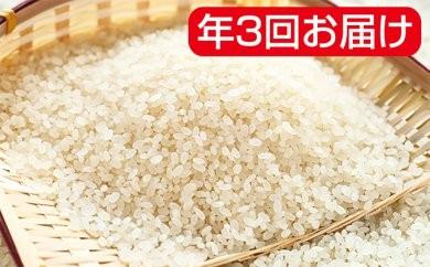 [№5787-0166]岐阜県産ハツシモ 30kg年3回(10月、2月、6月)