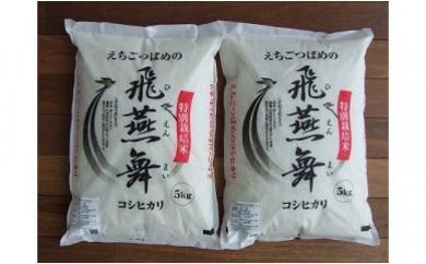 1701124 平成29年産 厳選コシヒカリ(一等米)えちごつばめの飛燕舞 白米10kg