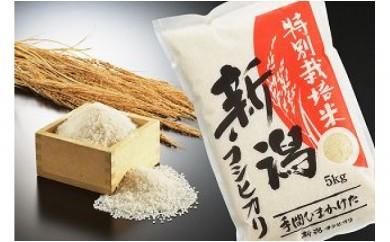 1701122 平成29年産 新潟県認証 特別栽培米コシヒカリ 白米10kg