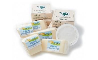 V002 北軽井沢カマンベールチーズとナチュラルチーズ10個セット【6,500pt】