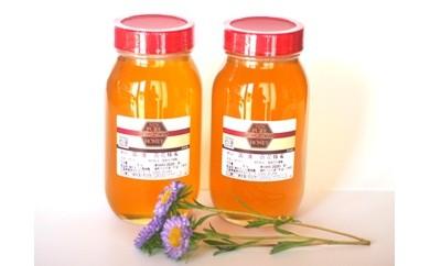 C-030 ◆お花畑の恵◆国産純粋百花蜂蜜(1kg×2本セット)