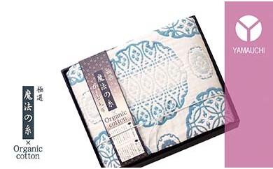 泉州ガーゼ 極選「魔法の糸×オーガニック」(プレミアム五重織ガーゼ毛布)ブルー