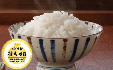 B-110 佐賀県産米さがびより 最上級厳選!!100%一等米15kg【7年連続特A受賞】