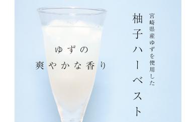 A154 柚子ハーベスト【6本セット】