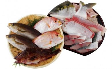 J338 五島列島旬の地魚大漁セットA【700pt】