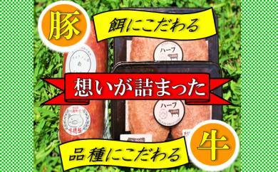 40-01「和牛のルーツハンバーグ」&「味穂豚ハム」