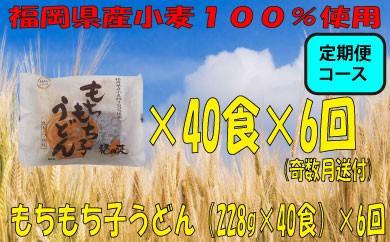E034.【定期便】福岡県産小麦使用!もちもち子うどん(228g×40食)×6回