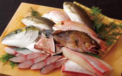 J337 五島列島旬の地魚大漁セットB【500pt】