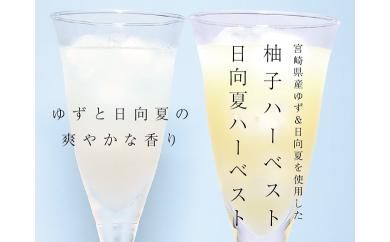 A156 柚子&日向夏ハーベスト【6本セット】