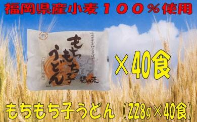 A182.福岡県産小麦使用!もちもち子うどん(228g×40食)