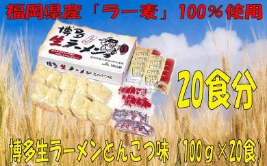 A183.福岡県産「ラー麦」使用!博多生ラーメンとんこつ味(100g×20食)