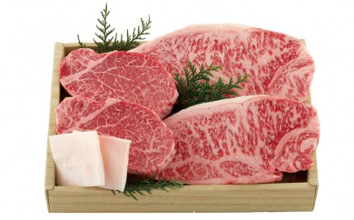 K350 長崎和牛サーロイン・ヒレ肉ステーキ食べ比べ【2,400pt】