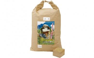 L367 新米長崎ヒノヒカリ玄米(15㎏)【600pt】