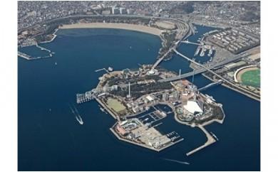 A-13   横浜・八景島シーパラダイス ワンデーパス+アクアシアター海の映像館入場券 2名様分
