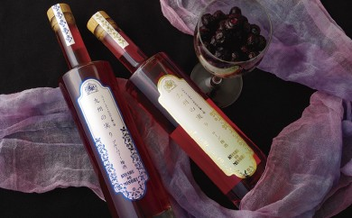 L329 九州の実りローズ梅酒・ブルーベリー梅酒【500pt】