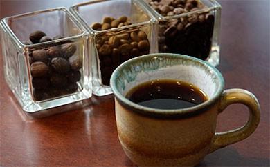 M-3 甘味が特徴の珈琲 3種類 飲み比べセット(200g×3 豆)