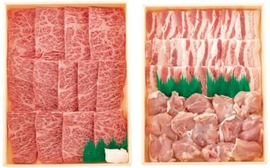 K339 長崎和牛・豚・鶏焼肉セット【1,000pt】