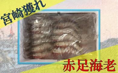19-07赤足海老